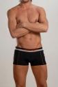 Le boxer de mon mari Geronimo 252